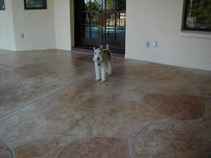 Concrete Stain Services For Homes In Scottsdale, Phoenix, Gilbert, Mesa,  Fountain Hills, Paradise Valley U0026 Throughout The Greater Phoenix, AZ Area